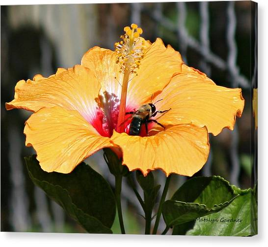 Flower Bee Canvas Print