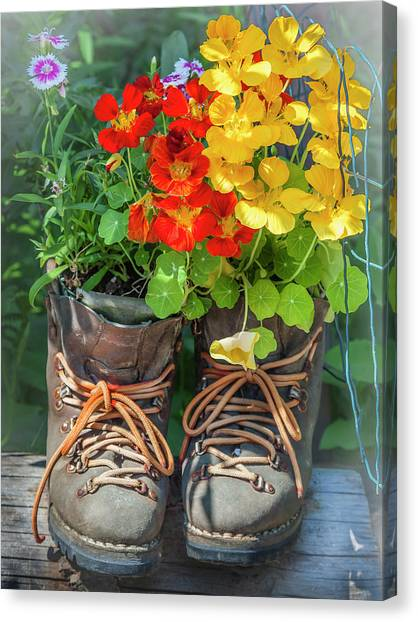 Flower Boots Canvas Print