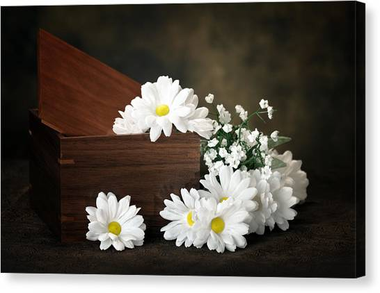 Daisy Canvas Print - Flower Box by Tom Mc Nemar