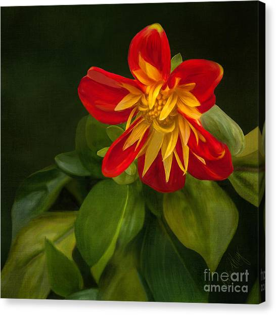 Flower From Seward Garden Canvas Print by Linda King