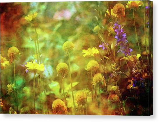 Flower Garden 1310 Idp_2 Canvas Print
