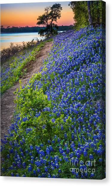 Flower Mound Canvas Print