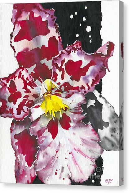 Fine Art India Canvas Print - Flower Orchid 11 Elena Yakubovich by Elena Yakubovich