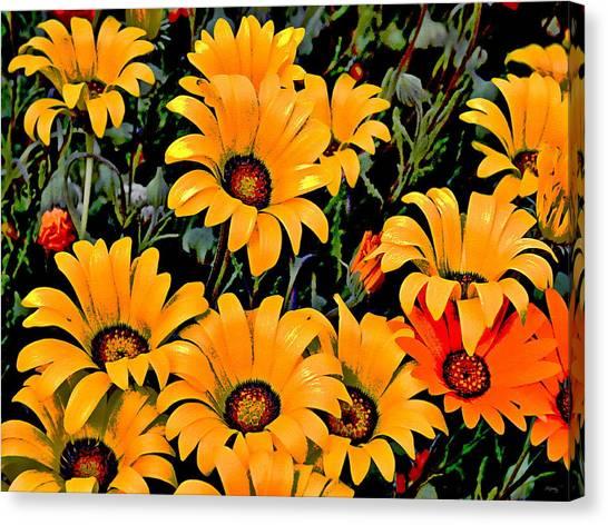 Installation Art Canvas Print - Flower Power 2 by Glenn McCarthy