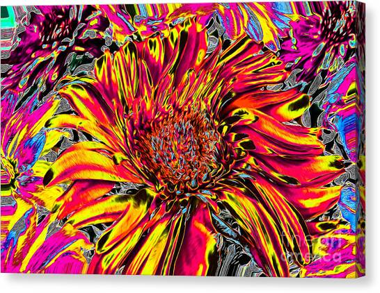 Flower Power II Canvas Print
