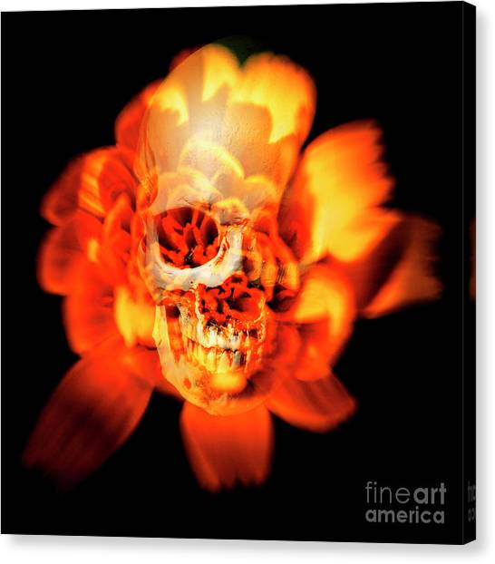 Skulls Canvas Print - Flower Skull by Jorgo Photography - Wall Art Gallery