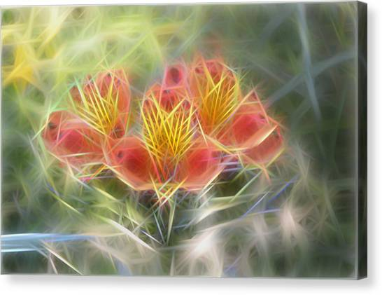 Flower Streaks Canvas Print