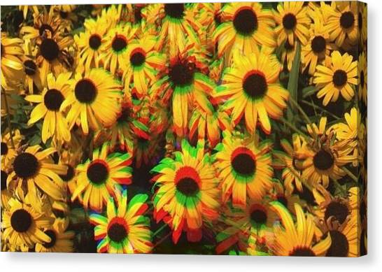 Edit Canvas Print - Flower Trip by Annie Walczyk