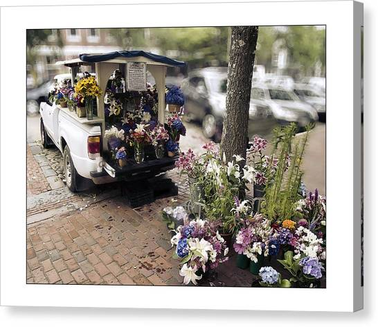 Cape Lily Canvas Print - Flower Truck On Nantucket by Tammy Wetzel