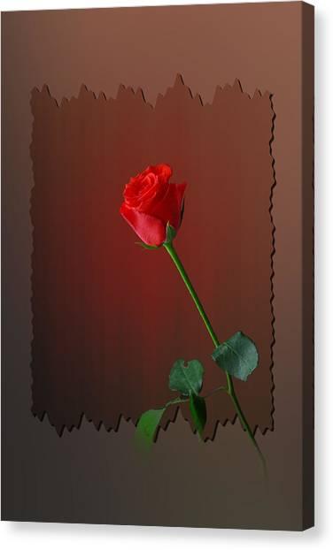 Flower Two Canvas Print by Deepak Pawar