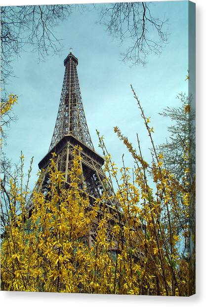 Flowered Eiffel Tower Canvas Print by Charles  Ridgway