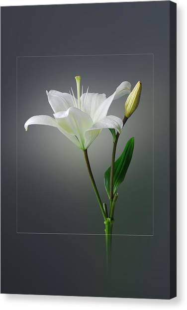 Flower..one Canvas Print by Deepak Pawar