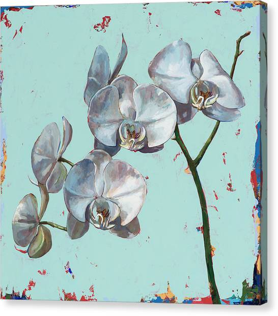 Orchid Canvas Print - Flowers #10 by David Palmer
