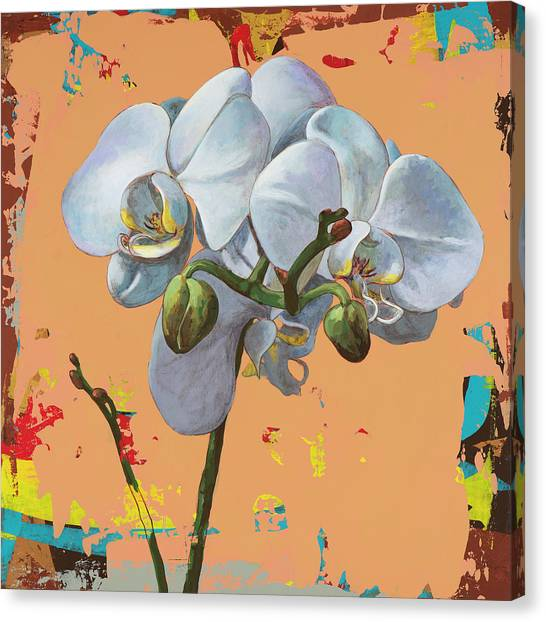 Orchid Canvas Print - Flowers #12 by David Palmer
