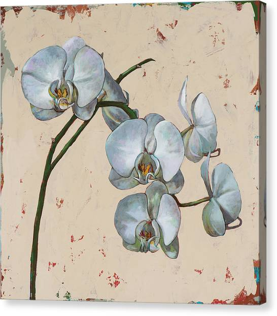 Orchid Canvas Print - Flowers #13 by David Palmer