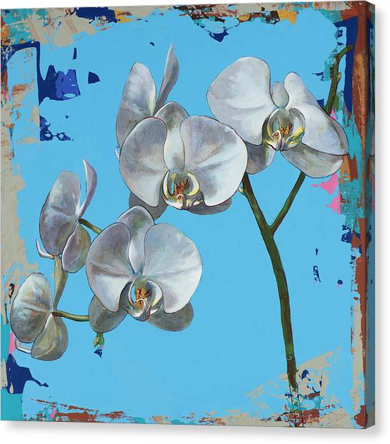 Orchids Canvas Print - Flowers #15 by David Palmer