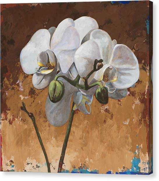 Orchid Canvas Print - Flowers #7 by David Palmer