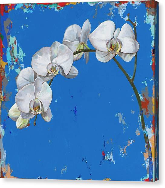 Orchids Canvas Print - Flowers #9 by David Palmer