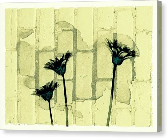 Flowers And The Brick Wall Canvas Print by Susan Stone