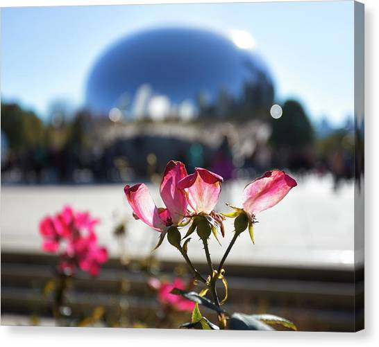 Cloudgate Canvas Print - Flowers At The Bean by Lauri Novak