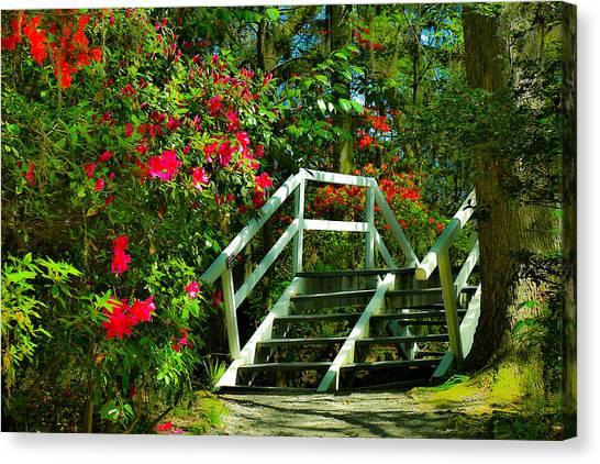 Flowers Bloom Alongside Magnolia Plantation Bridge - Charleston Sc Canvas Print