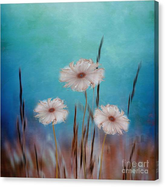 Flowers For Eternity 2 Canvas Print