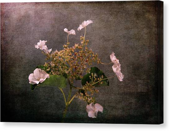 Canvas Print featuring the photograph Flowers For The Mind by Randi Grace Nilsberg