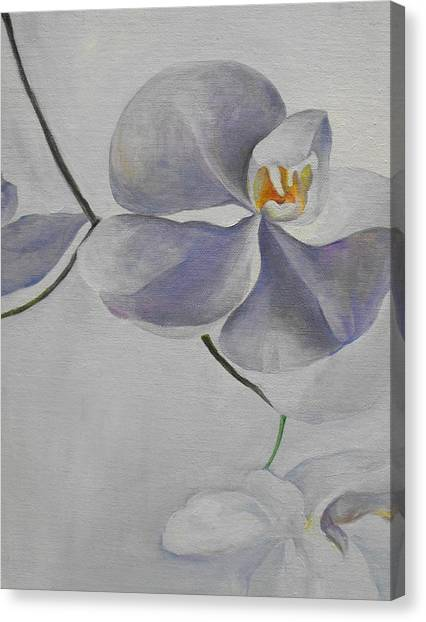 Flowers Frame 1 Canvas Print by Min Wang