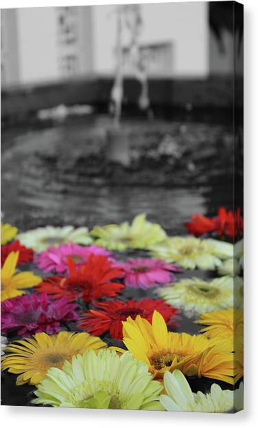 Flowers In Fountain Canvas Print