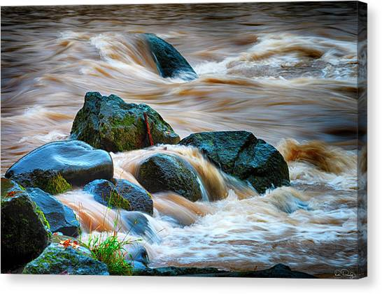 Canvas Print featuring the photograph Flowing Amber by Dee Browning