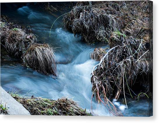 Flowing Creek Canvas Print