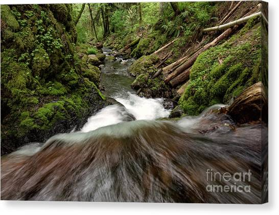 Flowing Downstream Waterfall Art By Kaylyn Franks Canvas Print