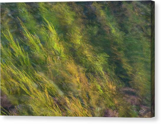 Flowing Luminescence Canvas Print by Leland D Howard