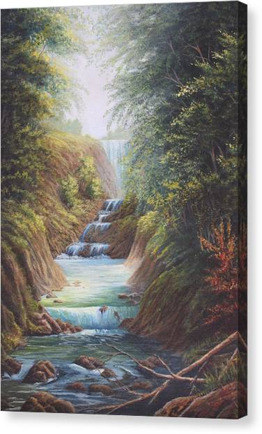 Flowing River Canvas Print by Diana Miller