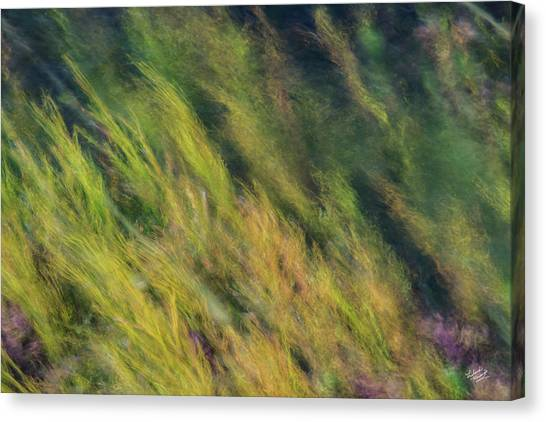 Flowing Textures Canvas Print by Leland D Howard