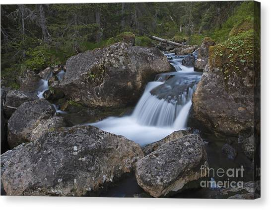 Flowing Through Boulders Canvas Print by Tim Grams