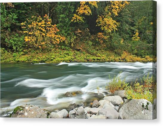 Flowing Umpqua River Canvas Print