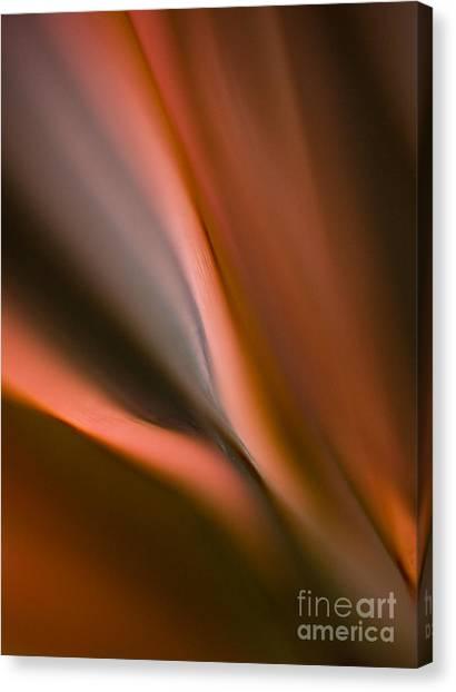 Fluids Canvas Print - Fluid Blades by Mike Reid