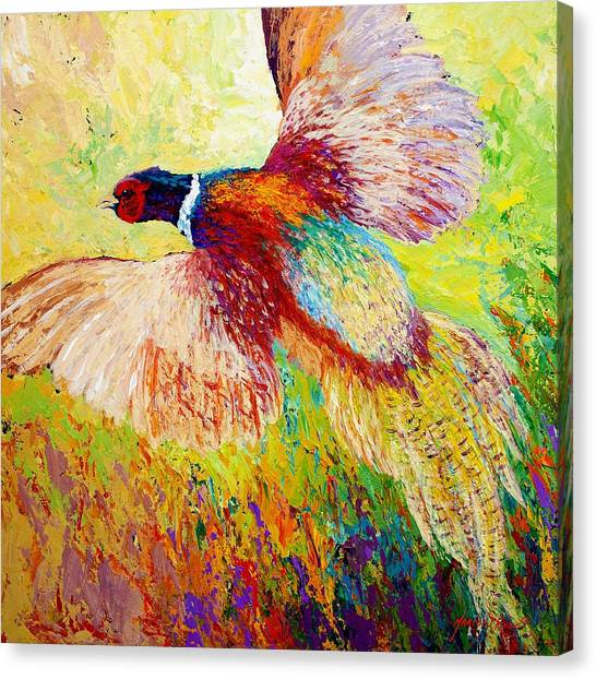 Gun Control Canvas Print - Flushed - Pheasant by Marion Rose