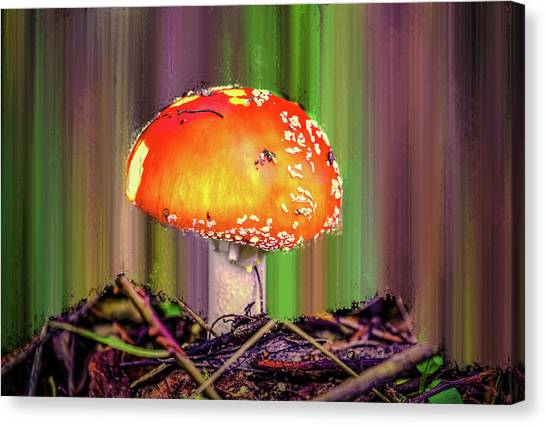 Canvas Print featuring the photograph Fly Agaric #g7 by Leif Sohlman