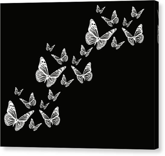 Black And White Butterfly Canvas Prints | Fine Art America