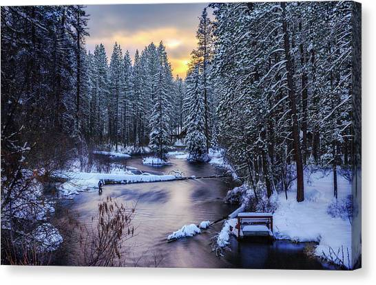 Fly Fisherman On The Metolius Canvas Print
