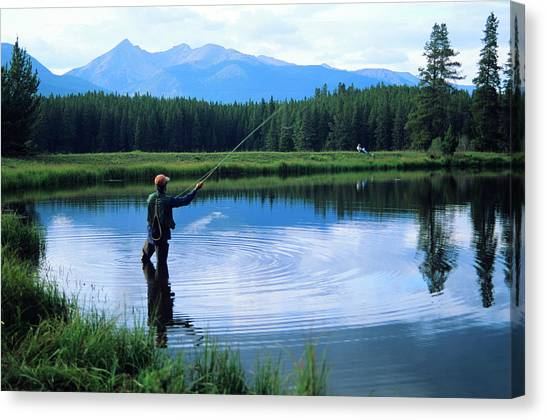 Fly Fishing In Rocky Mountain National Park Canvas Print