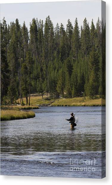 Yellowstone Canvas Print - Fly Fishing In The Firehole River Yellowstone by Dustin K Ryan