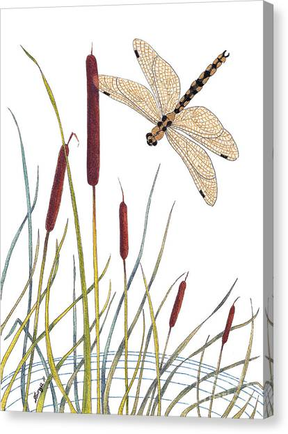 Fly High Dragonfly Canvas Print