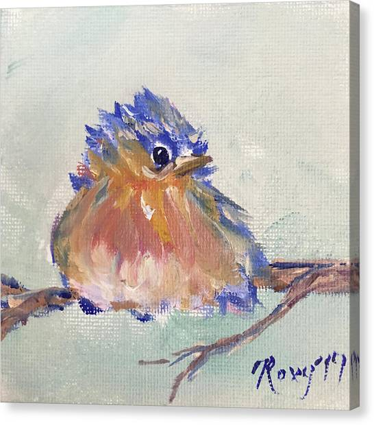 Flycatchers Canvas Print - Fluffy Bluebird Chick by Roxy Rich
