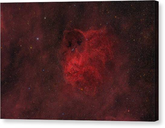 Flyihng Owl Nebula Canvas Print by Brian Peterson