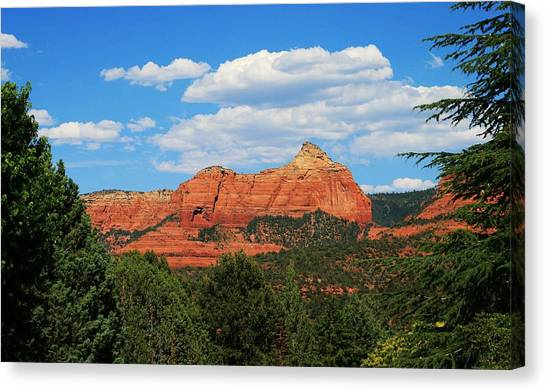 Flying Buttress Canvas Print