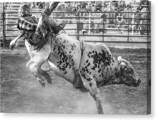 Rodeo Clown Canvas Print - Flying Cowboys by Steven Bateson