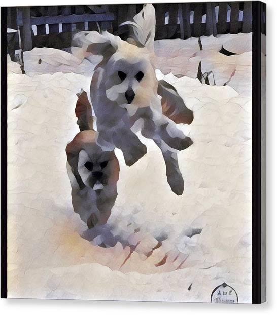 Flying Dog Canvas Print